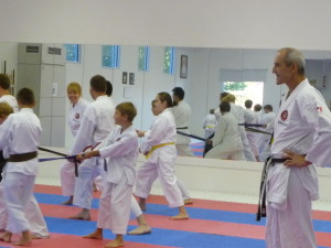 Karate for Girls, Boys, Teens & Adults