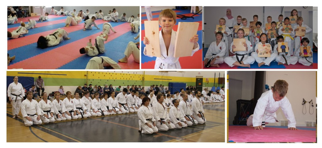 Karate collage 2015